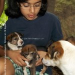 Akanksha with JLo and babies!