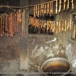 Animal fat preserved to prepare animal fat oil in the slaughter house 4