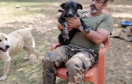 Reporting Puppies |Ricky with Rakesh Shukla VOSD