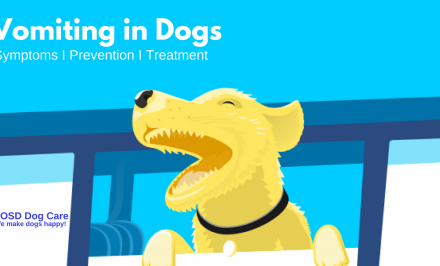 vomiting in dogs - identification & treatment I VOSD Expert Advice™